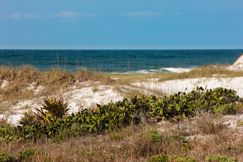 View from sand dunes at Topsail Park in Santa Rosa Beach